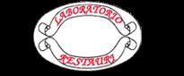 RESTAURATORE TORINO
